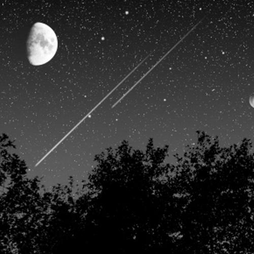 Viaje a las estrellas - fabiana fondevila